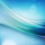 Fucus (Alga bruna): i benefici del mare