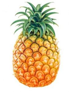 frutto dell'ananas