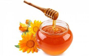 Un vasetto di Miele